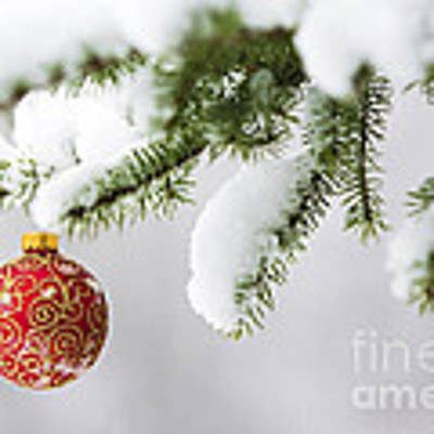 Christmas Ornament In The Snow Art Print