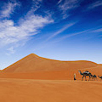 Desert Life .. Art Print by Hesham Alhumaid