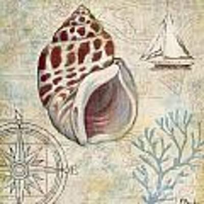 Discovery Shell Iv Art Print