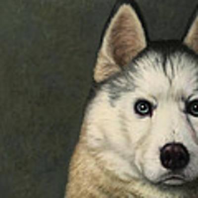 Dog-nature 9 Art Print