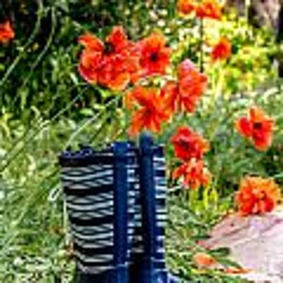 Garden Boots Original by Teri Virbickis