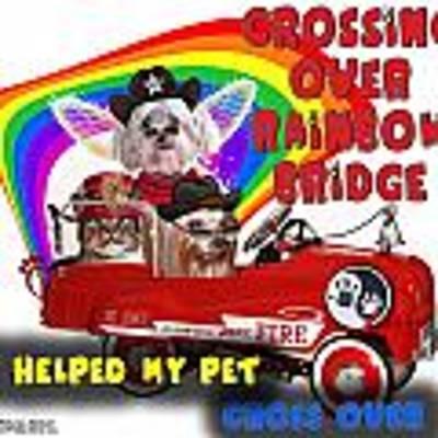I Helped My Pet Cross Rainbow Bridge Art Print by Kathy Tarochione
