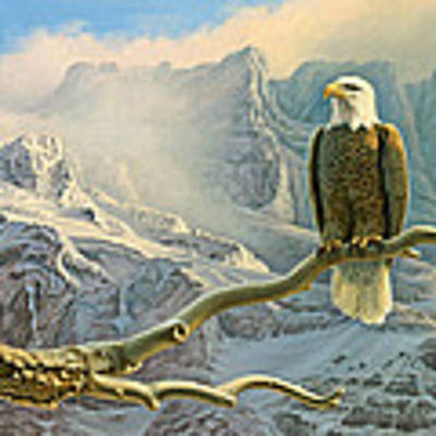 In The High Country-eagle Art Print