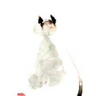 Meow Curious Cute Kitten Little Cat Watercolor Painting Funny Cats Art Print
