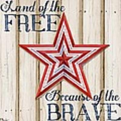 Patriotic Spirit Barn Star I Art Print