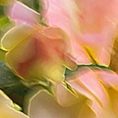 Rosey Blur Art Print by Vickie Szumigala