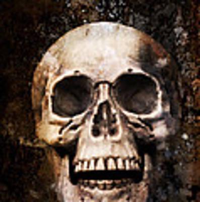 Skull In Earth Art Print