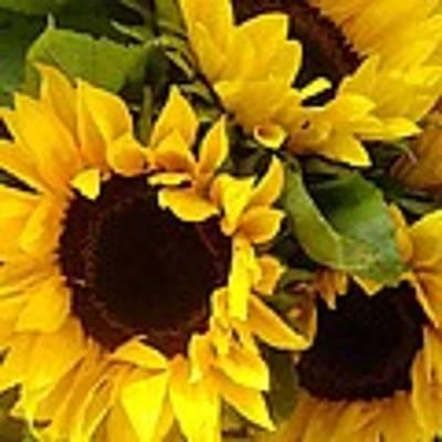 Sunflowers Original by Amy Vangsgard