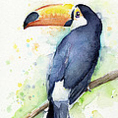 Toucan Watercolor Art Print by Olga Shvartsur