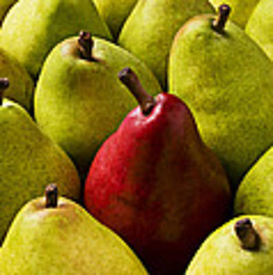 Red And Green Pears  Art Print