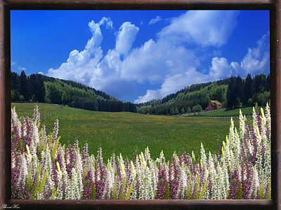 Print featuring the photograph  A Beautiful View by Bernd Hau