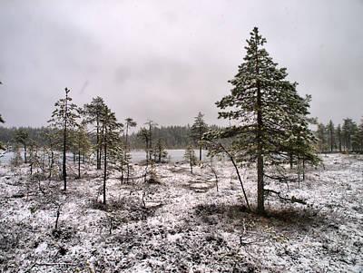 Photograph -  April Snow 1 by Jouko Lehto