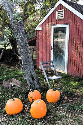 Photograph -  Artistic Hen House W Pumpkins by Margie Avellino