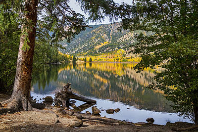 September Photograph -  Autumn Cottonwood Lake Reflections Dreaming by James BO  Insogna