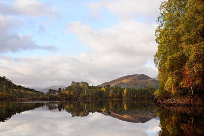 Photograph -  Autumn In Glen Affric by Gavin Macrae