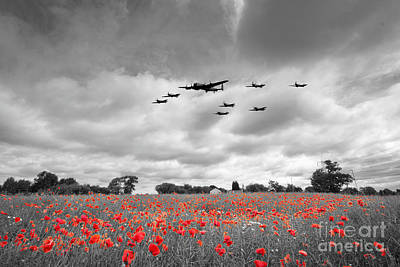 Word Signs -  Battle Of Britain Anniversary - Selective by Airpower Art