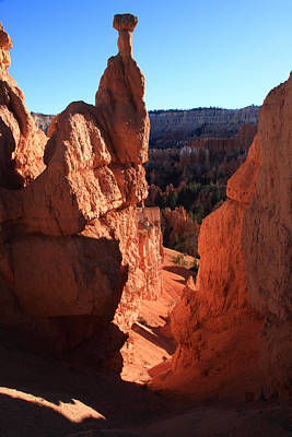 Photograph -  Bryce Canyon Utah by Aidan Moran