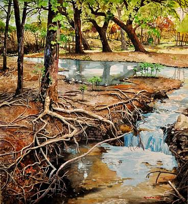 Tree Roots Painting -  Canyon Creek by Robert W Cook
