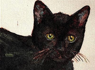 Chat Noir Portrait Black Bombay Cat  No. 2 Art Print