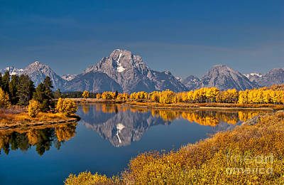 Fall Colors At Oxbow Bend In Grand Teton National Park Art Print