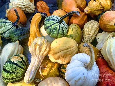 Photograph -  Fall Colors Pumpkins And Gords 2 by Edward Sobuta