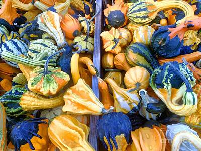 Photograph -  Fall Colors Pumpkins And Gords 9 by Edward Sobuta