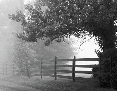 Photograph -  Fog At Dawn by Ann Bridges