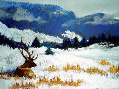 High Country Elk Art Print by Curt Peifley