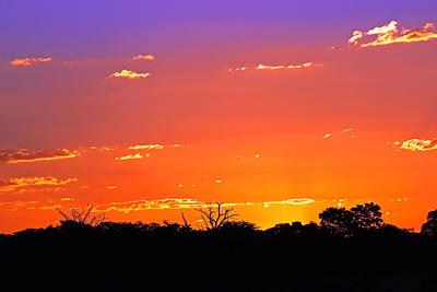 Cactus Royalty Free Images -  Hwange Sunset Royalty-Free Image by Tony Murtagh