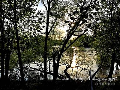 Photograph -  In The Shadows  - No. 430 by Joe Finney
