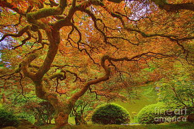 Japanese Garden Original by Tom Cheatham