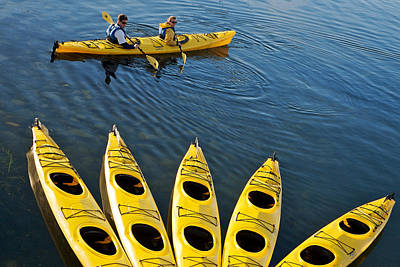 Photograph -  Kayak Fan by Lawrence Boothby