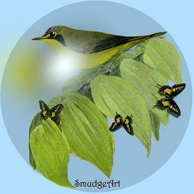 Warbler Digital Art -  Kentucky Warbler by Madeline  Allen - SmudgeArt