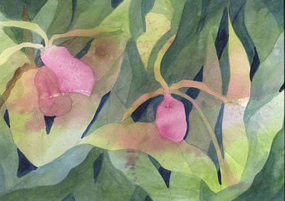 Painting -  Ladyslipper by Jane Croteau