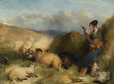 Sheep Painting -  Lassie Herding Sheep by MotionAge Designs