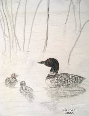 Loon Drawing -  Loon Float by Sandra Lunde