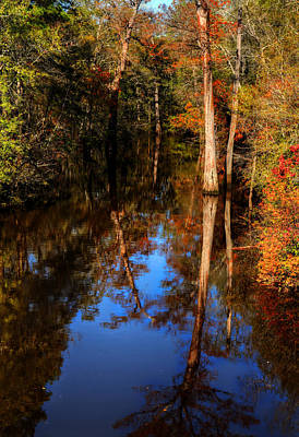 Photograph -  Louisiana Autumn And Reflection by Ester Rogers