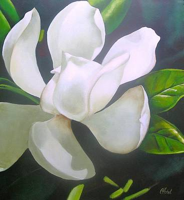 Magnolia Delight Painting Art Print