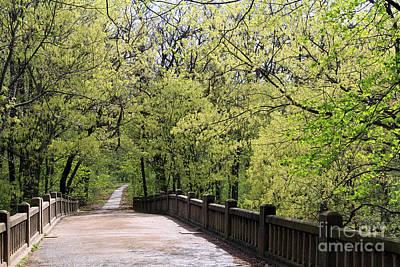 Photograph -  Matthiessen State Park In Spring by Paula Guttilla