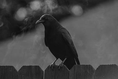 Photograph -  Of Fog And Crow Saga 3 by Rae Ann  M Garrett