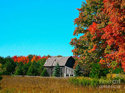 Fall Foliage Mixed Media -  Old Barn In Fall Color by Robert Pearson