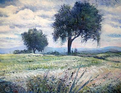 Olive Trees At Monte Cardeto Italy 2009  Art Print by Enver Larney