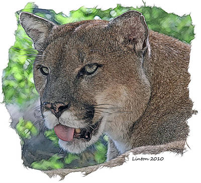 Panther 2 Art Print by Larry Linton