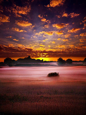 Natur Photograph -  Quiescent  by Phil Koch