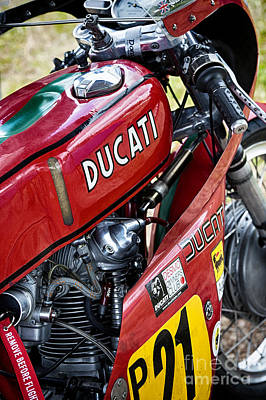 Racing Ducati  Art Print by Tim Gainey