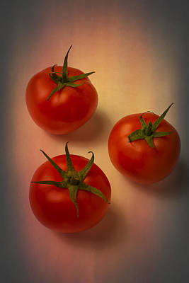 Photograph -  Red Tomatoes by Garry Gay