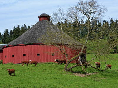Photograph -  Round Red Barn by Ansel Price