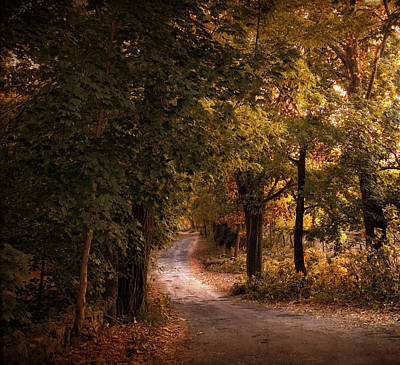 Autumn Road Photograph -  Rural Road  by Jessica Jenney