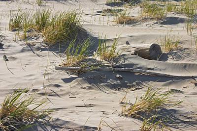 Popham Beach Photograph -  Sand And Driftwood Popham Beach Maine by Keith Webber Jr