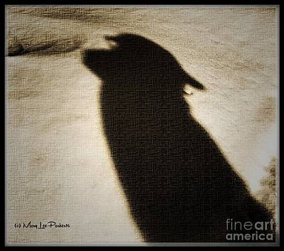 Shadow In The Snow Art Print